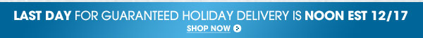 Last day for guaranteed holiday delivery is noon                 EST 12/17