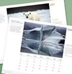 ECO-TIPS MONTHLY CALENDAR